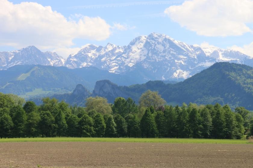 SalzburgMay17 067